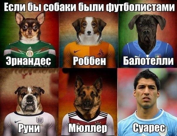 Звезды футбола
